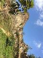 گیلان - فومن - قلعه رودخان شکوه استقامت و اراده انسان در برابر مقاومت های طبیعت.jpg