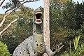 ডুলাহাজারা সাফারি পার্কের সামনে ডাইনোসরের ভাস্কর্য্য ২.jpg