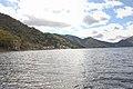 中禅寺湖 - panoramio (2).jpg