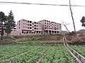 巴中市大和乡2013 - panoramio.jpg