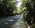 広坂 下り - panoramio.jpg