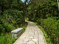 柱里景区步道 - Footpath in Zhuli Scenic Area - 2015.06 - panoramio.jpg