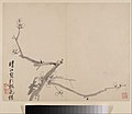 清 李方膺 墨梅圖 冊-Album of Blossoming Plum MET DP211119.jpg