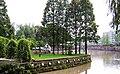 温江置信公园-流浪的狗狗 - panoramio.jpg