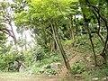 港区立高輪の森公園 - panoramio.jpg