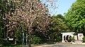 無上和尚記念公園 Master Wushang Memorial Park - panoramio.jpg