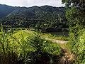磨里水库上北岭 - Trail from Moli Reservoir to Beiling Mountain - 2014.07 - panoramio.jpg