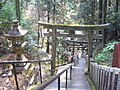 脳天大神 石段 Stone steps toward Nouten-ōkami 2010.3.30 - panoramio.jpg