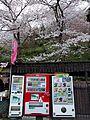 自販機 2016 桜 (26344238105).jpg