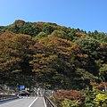 荒川-白川橋-紅葉-04 - panoramio.jpg