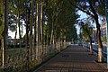 西民主大街 - panoramio.jpg