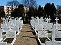 - Cmentarz Nowofarny - panoramio (11).jpg