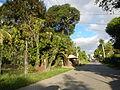 0106 jfFarms Adventure Roads Talacsan San Rafael Bulacanfvf 22.JPG