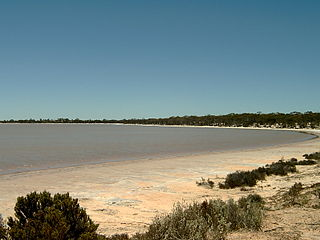 Lake Gilles Conservation Park Protected area in South Australia