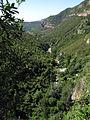 093 Vall de Sant Miquel, amb el riu Tenes, des de Sant Miquel del Fai.JPG