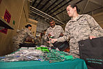 108th Wing holds SAPR Stand Down 130811-Z-AL508-003.jpg