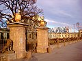 1108. St. Petersburg. Gate of the fence with sculptures of lions.jpg
