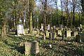 1486viki Cmentarz żydowski przy ul. Lotniczej. Foto Barbara Maliszewska.jpg