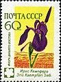 1960 CPA 2499.jpg