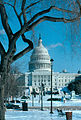 1982-01-Washington Capitol032-ps.jpg