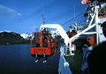 1989 polarfuchs-grytviken hg.jpg