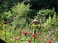 2006 Fenway community garden Boston 179121595.jpg