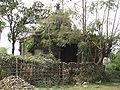 2009-03 Janakpur 22.jpg