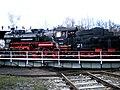 20090321. 1.Dampfloktreffen.-082.1.jpg