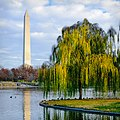 2011-11a Washington Monument.jpg