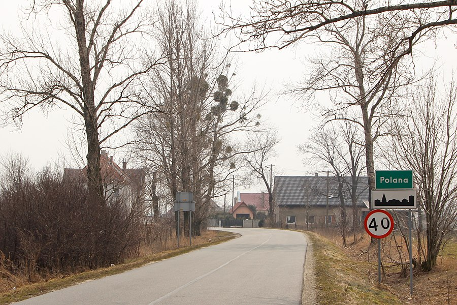 Polana, Opole Voivodeship