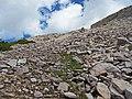 2015.07.11 11.20.20 DSCN2608 - Flickr - andrey zharkikh.jpg
