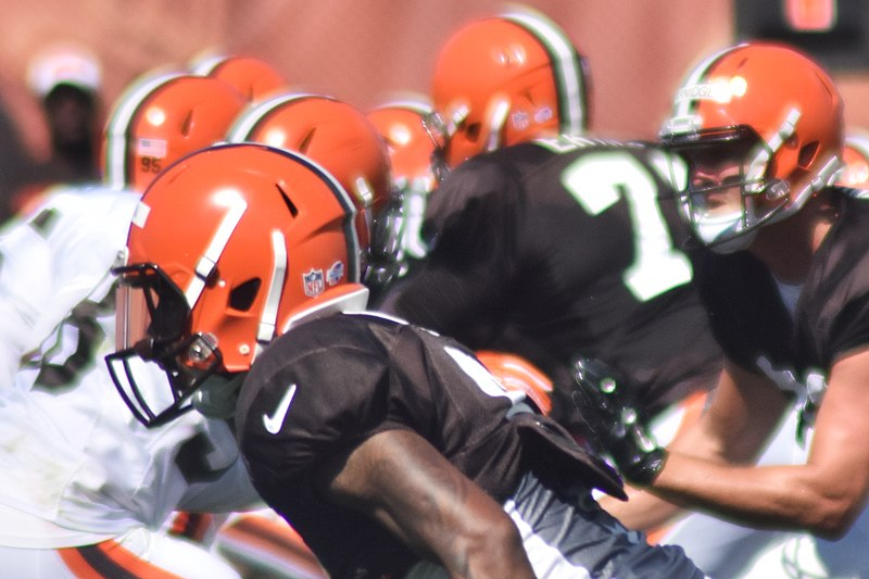 File:2015 Cleveland Browns Training Camp (20220501136).jpg