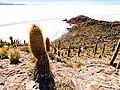 20170809 Bolivia 1544 Uyuni sRGB (37980045571).jpg