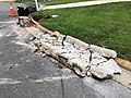 2021-07-13 12 55 54 A section of curb after removal and ready for replacement along Apple Barrel Court in the Franklin Farm section of Oak Hill, Fairfax County, Virginia.jpg