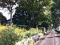 4 Chome Jindaiji Minamimachi, Chōfu-shi, Tōkyō-to 182-0013, Japan - panoramio (6).jpg