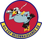 4th Expeditionary Reconnaissance Squadron.jpg