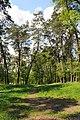 71-101-5018 Cherkasy park Sosnivsky DSC 2249.jpg
