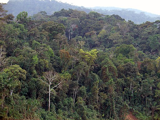 7 - Itahuania - Août 2008