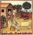 8-alimenti, latte, Taccuino Sanitatis, Casanatense 4182..jpg