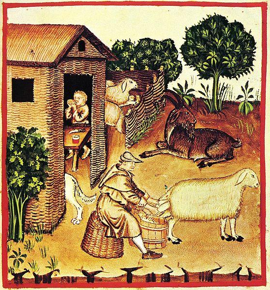 Archivo:8-alimenti, latte, Taccuino Sanitatis, Casanatense 4182..jpg