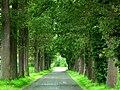 8730 Beernem, Belgium - panoramio.jpg