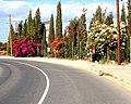 A@a pervolia village larnaca cy - panoramio (1).jpg
