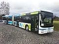AVV-Gelenkbus der DRB.jpg