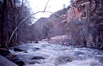 AZ Sedona Oak creek.jpg