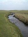 A Natural Water Trap - geograph.org.uk - 698463.jpg