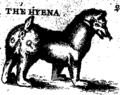 A description of three hundred animals, viz Fleuron T120743-27.png