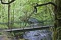 A footbridge in Arley Wood - geograph.org.uk - 2396530.jpg