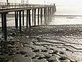 A muddy foreshore, Grays - geograph.org.uk - 636520.jpg