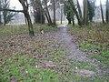 A murky December morning in Shalford Park - geograph.org.uk - 1082806.jpg
