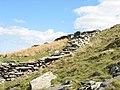 Abandoned sheepfold - geograph.org.uk - 398906.jpg